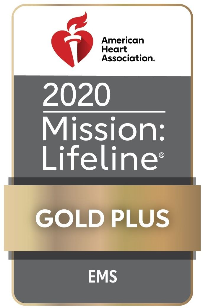 EMS Gold Plus Award 2020
