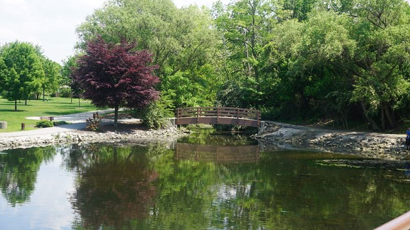 Clague Park  - Bridge over the water