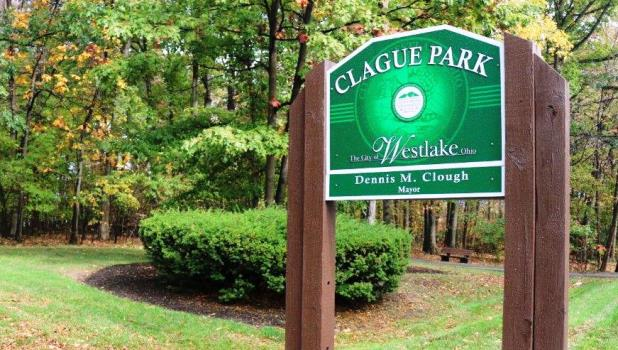 Clague Park fall