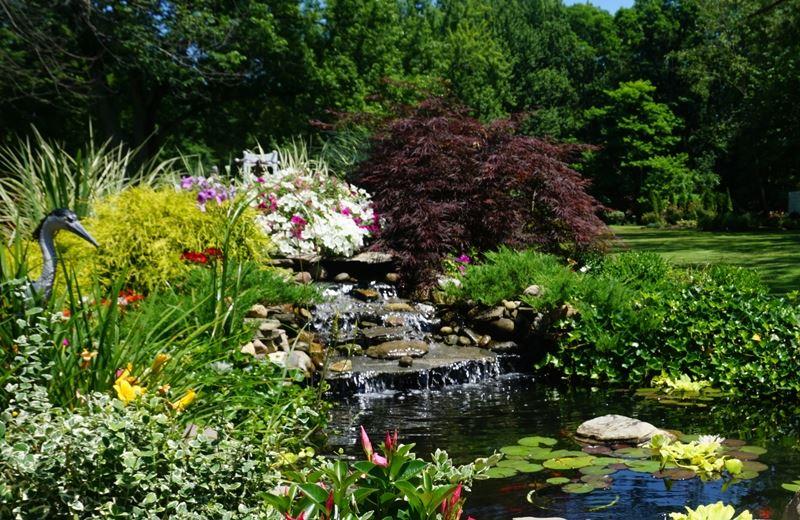 Westlake in Bloom | Westlake, OH - Official Website
