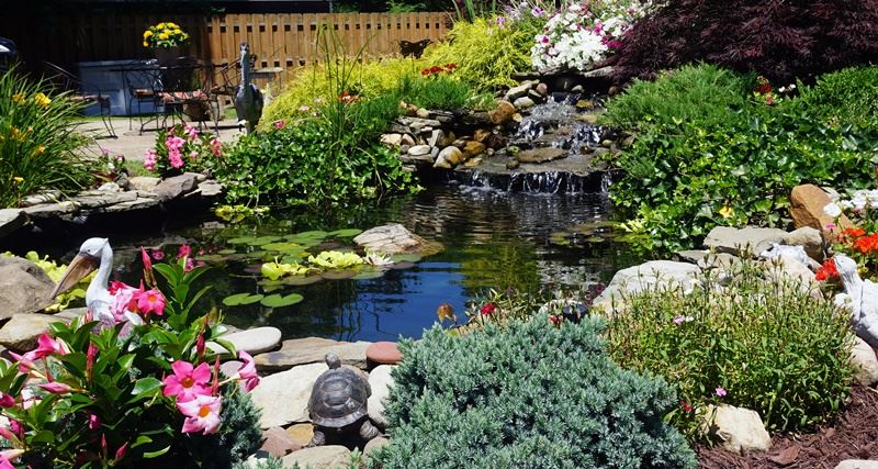 Residential Landscaping – Rear Yard: Sandy Strodtbeck