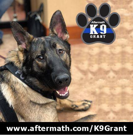 Photo with logo courtesy of Aftermath Services LLC. Vote at https://www.aftermath.com/k9-grant.
